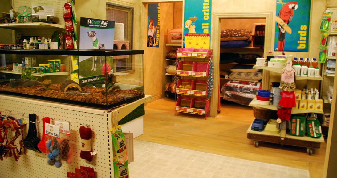 61214e71ca Como abrir um pet shop - Confira as dicas sobre pet shops aqui!