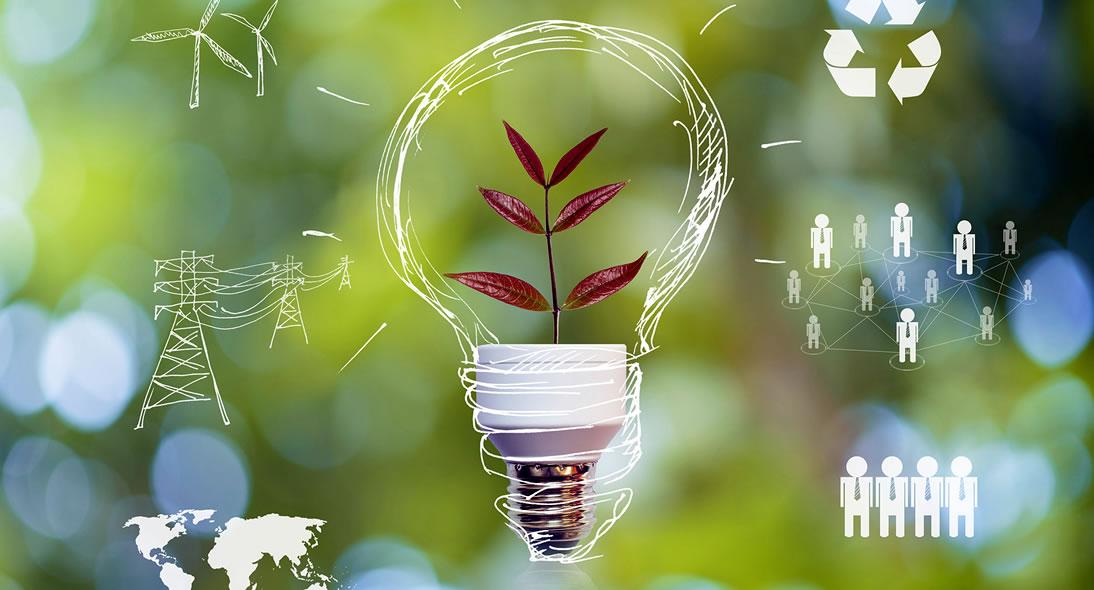 Ideias de negócios sustentáveis e lucrativos para você montar